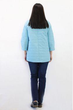 Демисезонная куртка Д-1002 Г